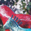 Ewa Arfwedsons_hästar - 1